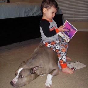 ATT000055 290x290 Crianças e animais de estimação em fotos