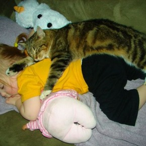 ATT000077 290x290 Crianças e animais de estimação em fotos