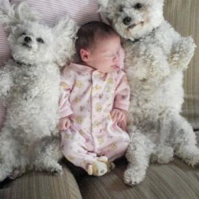 ATT0001010 290x290 Crianças e animais de estimação em fotos