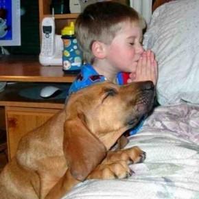 ATT0001616 290x290 Crianças e animais de estimação em fotos
