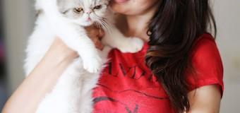 Lia Camargo apresenta seus Pets