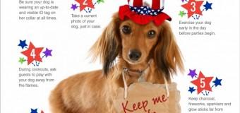 Campanhas para o 4 de Julho nos EUA se aplicam aqui também!