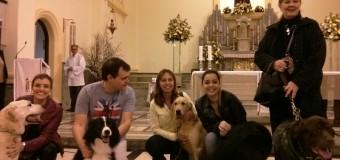 Missa para os animais na Paróquia São Francisco de Assis