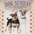 Festa para cachorros - Dog Sunday