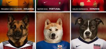 Cães vestem camisas de times para a Copa do Mundo