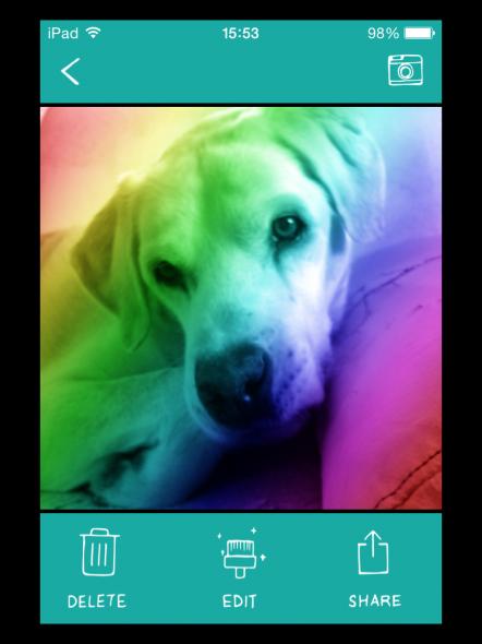 IMG 0091 442x590 BarkCam: App ajuda seu cão a sair bem na foto