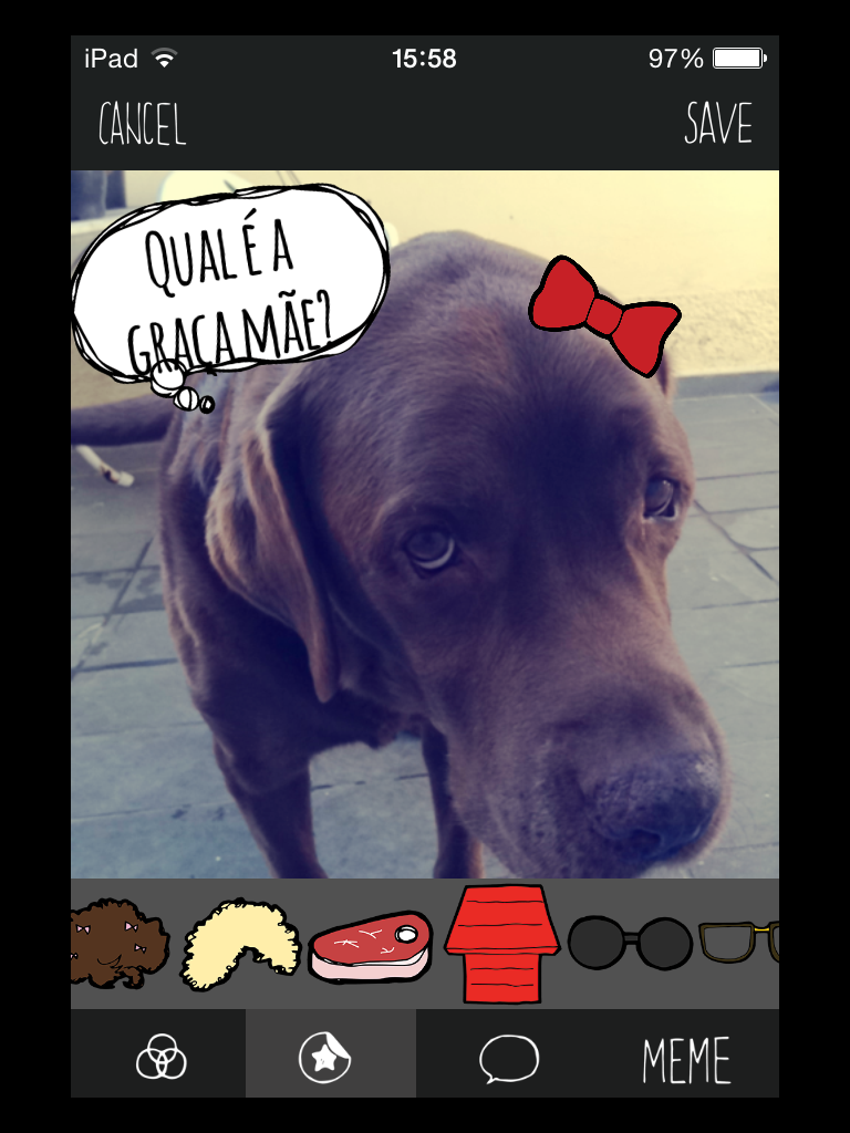 IMG 0092 BarkCam: App ajuda seu cão a sair bem na foto