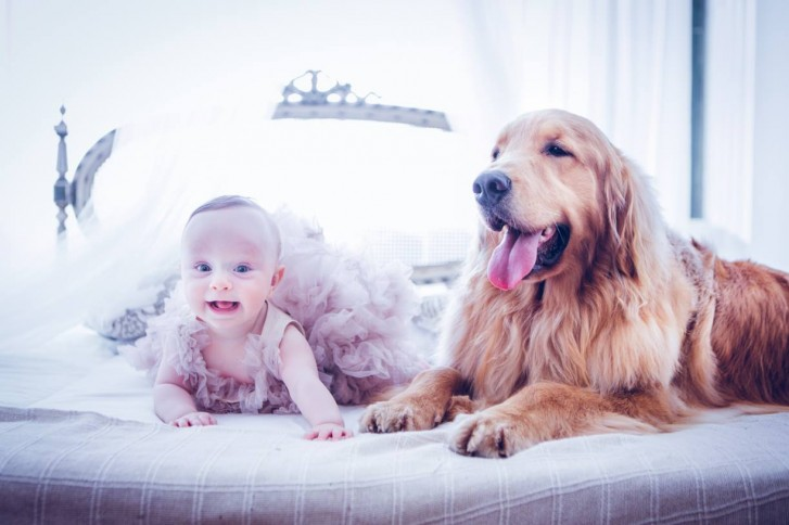 Lidi10 727x484 Lidi Lopez: Fotógrafa clica mamães, bebês e seus pets