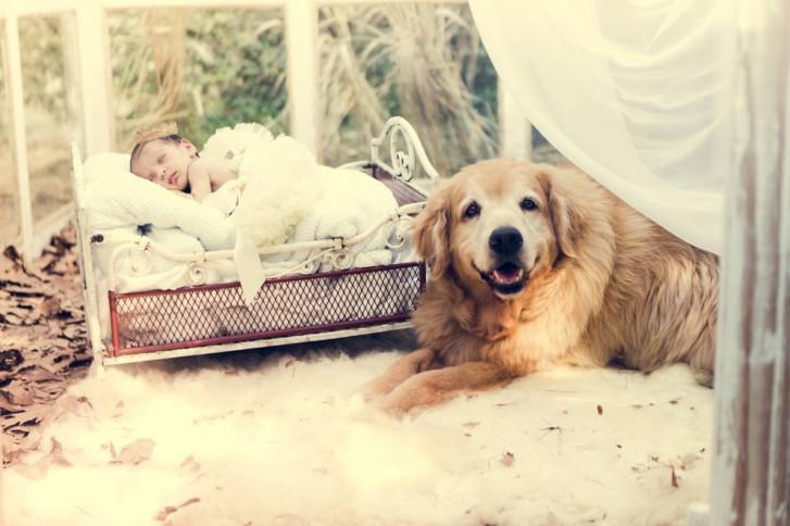 Lidi11 727x484 Lidi Lopez: Fotógrafa clica mamães, bebês e seus pets