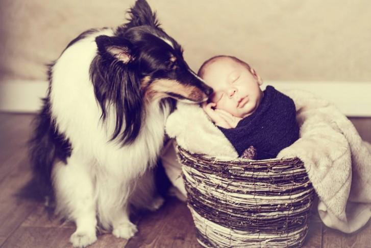 Lidi13 727x485 Lidi Lopez: Fotógrafa clica mamães, bebês e seus pets