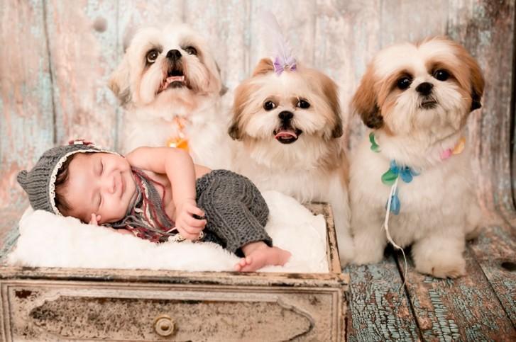 Lidi2 727x483 Lidi Lopez: Fotógrafa clica mamães, bebês e seus pets