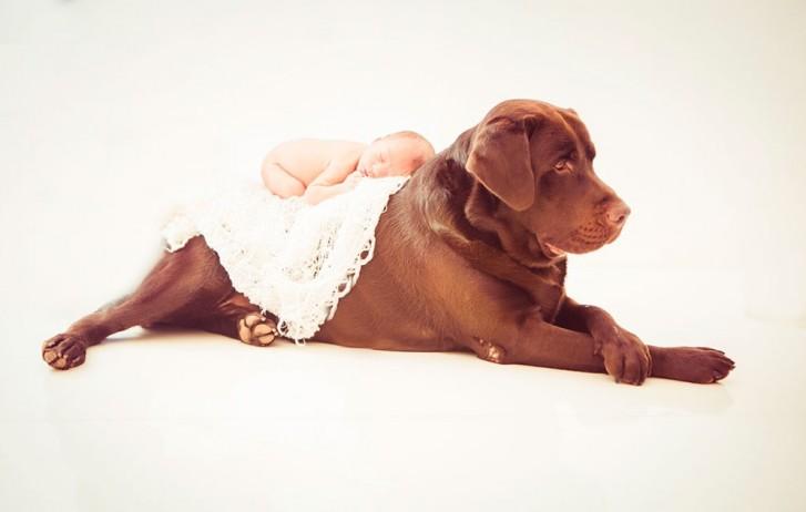 Lidi3 727x462 Lidi Lopez: Fotógrafa clica mamães, bebês e seus pets