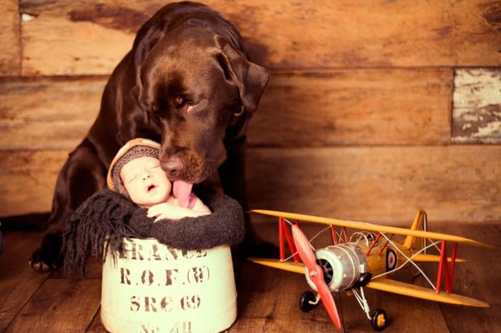 Lidi4 727x483 Lidi Lopez: Fotógrafa clica mamães, bebês e seus pets