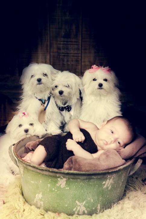 Lidi5 484x727 Lidi Lopez: Fotógrafa clica mamães, bebês e seus pets