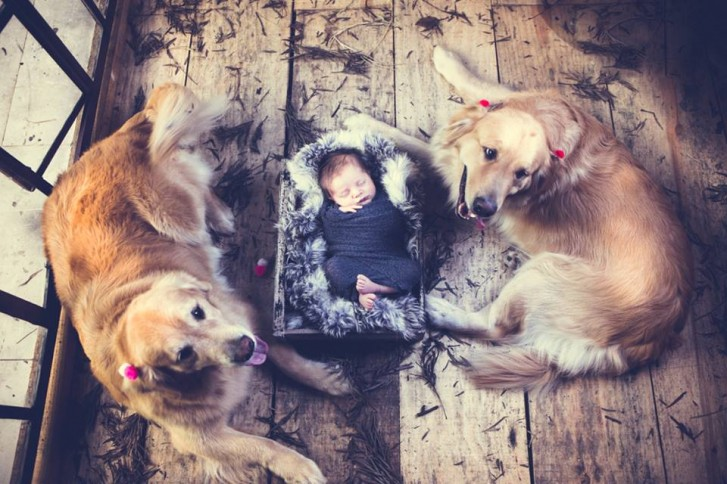 Lidi6 727x484 Lidi Lopez: Fotógrafa clica mamães, bebês e seus pets